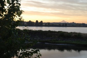 Morning view of Mt. Hood from Sauvie Island